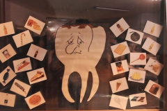 Projekt-Zähne